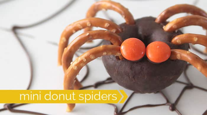 Mini Doughnut spiders